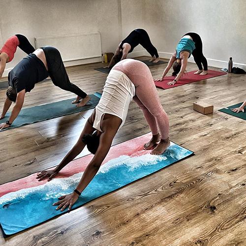 hatha / hatha flow yoga